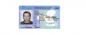Chung Bruce License