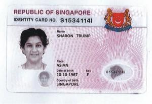 Trump license