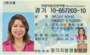 Song Driver license