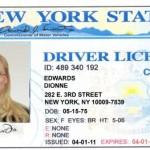 Dionne License