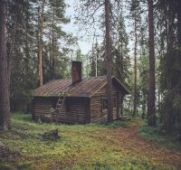 cottage in woods